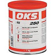OKS Allroundpaste Weiss -40 bis +1400 Grad 1kg Dose 1105890445