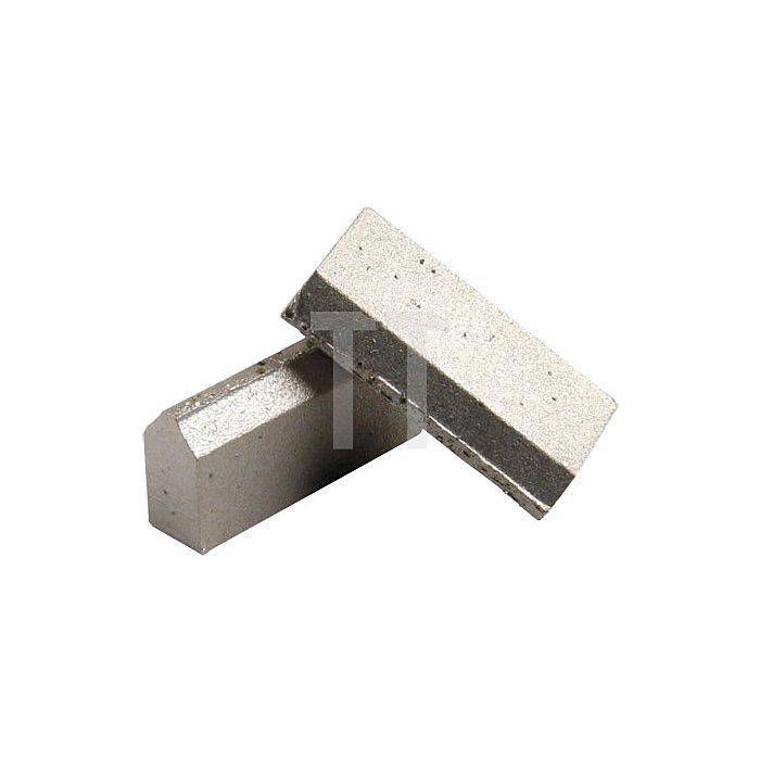 Bohrsegment T-500.11 6 x 8,5 x 20mm