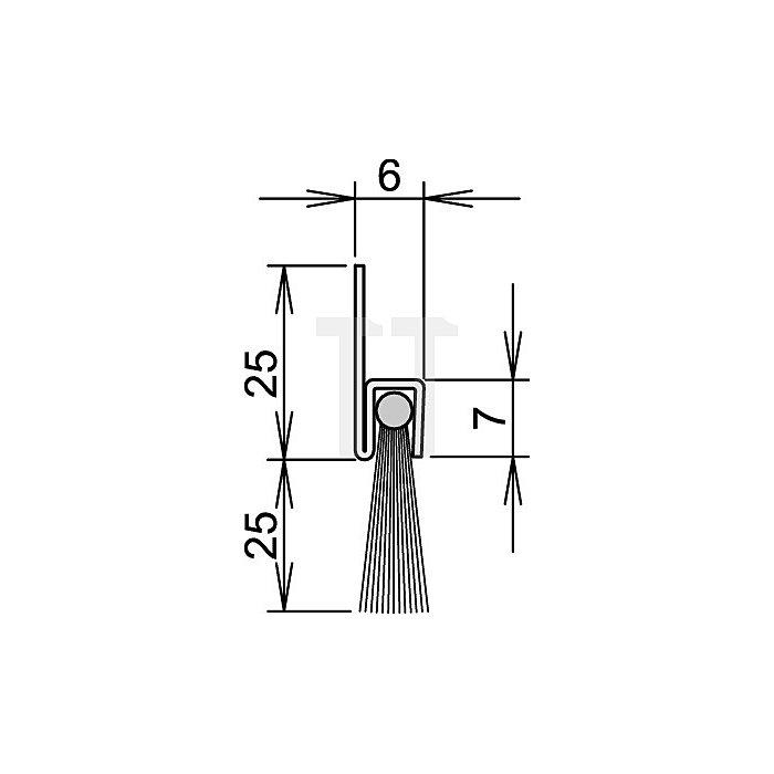 Bürstentürdichtung FA25-6 Nr.4-310-025 L.2000mm verzinkt Rosshaarbesatz
