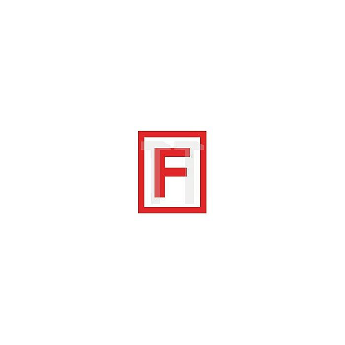 FS-Rahmen-Cliprosette 813/6 FS 6mm PZ Lochung oval Alu F12 verkehrsweiss 9016