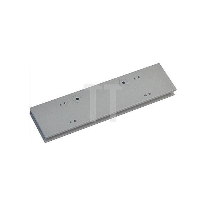 Glastürschuh zu TS 92 silber