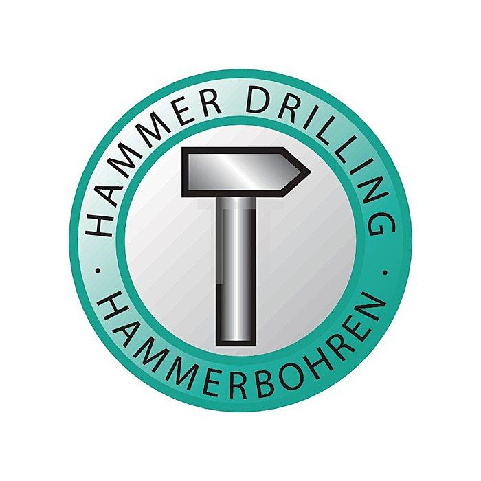 Hammerbohrer D.12,0mm SDS-plus Arbeits.L.250,0mm Gesamt.L.310,0mm 2618 Trijet