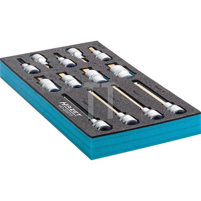 HAZET Schraubendreher-Steckschlüsseleinsatz-Satz - Vierkant hohl 12,5 mm (1/2 Zoll) - Innen-Sechskant Profil - Anzahl Werkzeuge: 13