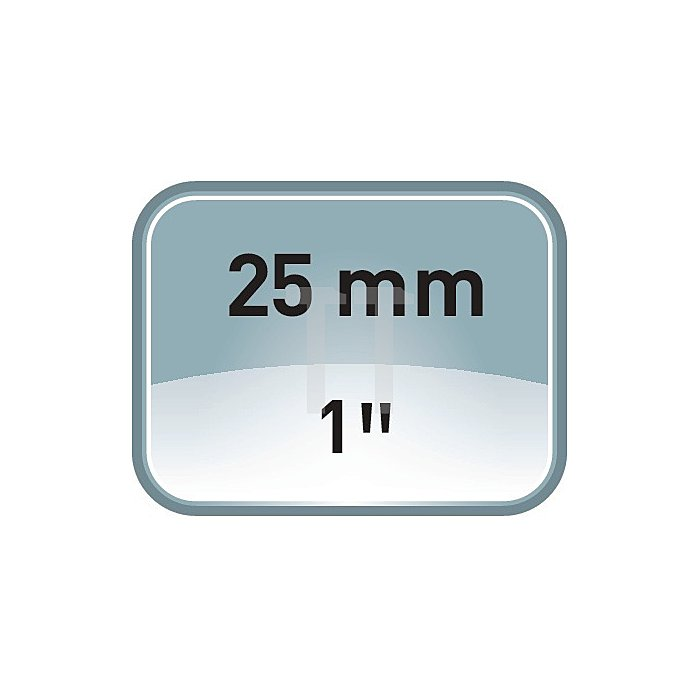 Kraftschraubereinsatz SW24mm 1Zoll 4KT DIN3121 ASW Form H25