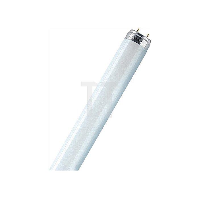 Leuchtstoffröhre Lumilux 18W L.59cm D.26mm Cool White Lichtfarbe 840 OSRAM
