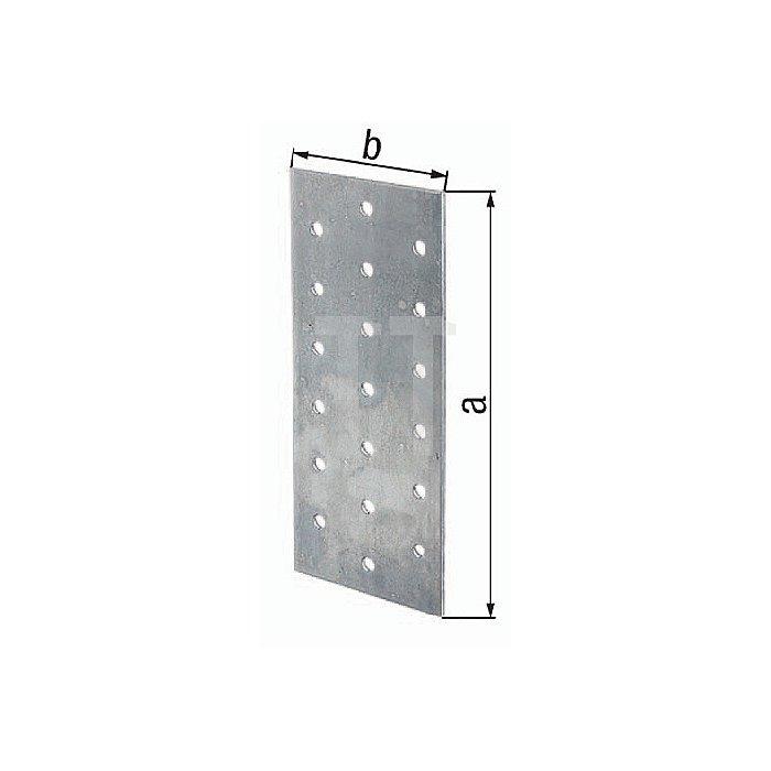 Lochplatte EN 14545:2009-2 300x100mm Stahl roh sendzimirverzinkt GAH