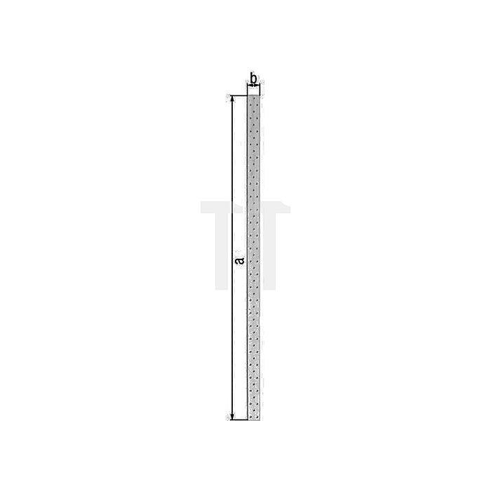 Lochplattenstreifen EN 14545:2009-2 1200x120mm Stahl roh sendzimirverzinkt GAH