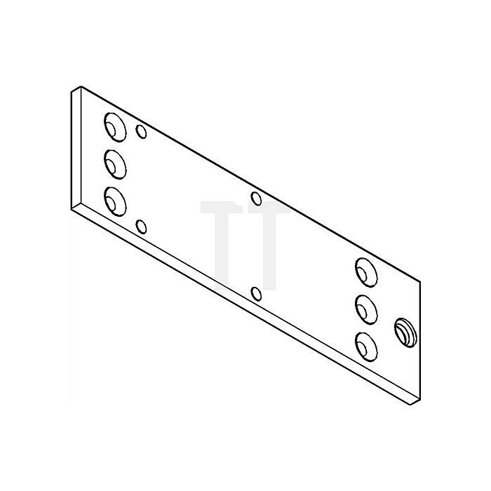 Montageplatte für TS 1500 silber