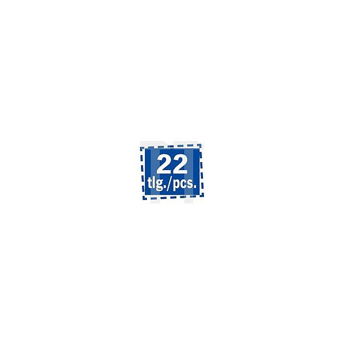 Projahn 1 Zoll Steckschlüssel Koffer 22-tlg. 2052