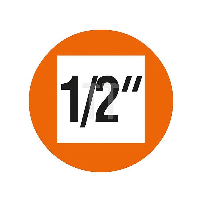Projahn 1/2 Zoll Bit Stecknuss-Satz auf Schiene 11-tlg. 6kant+VZ 4232