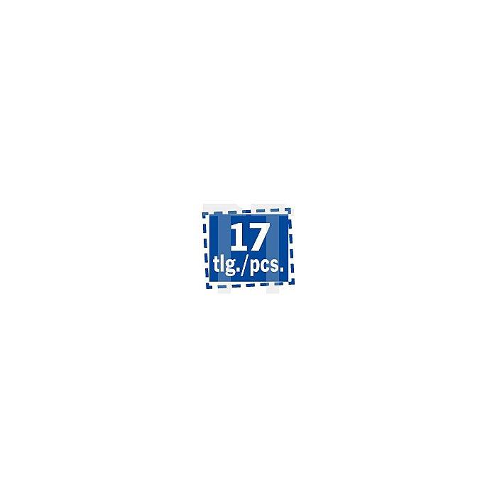Projahn 1/2 Zoll Kraft-Knarren Steckschlüssel-Satz 17-tlg. 394020