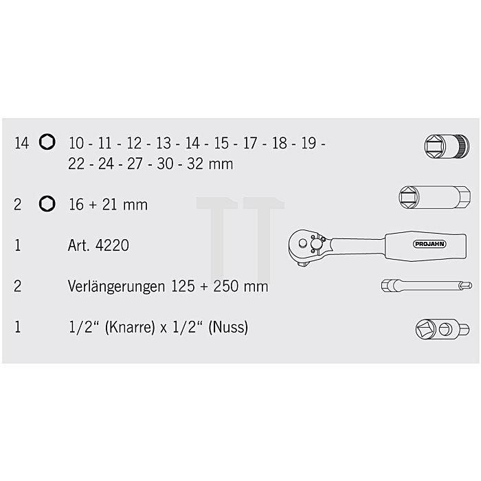 Projahn 1/2 Zoll Steckschlüssel-Satz 12-kant 30-tlg. 4023