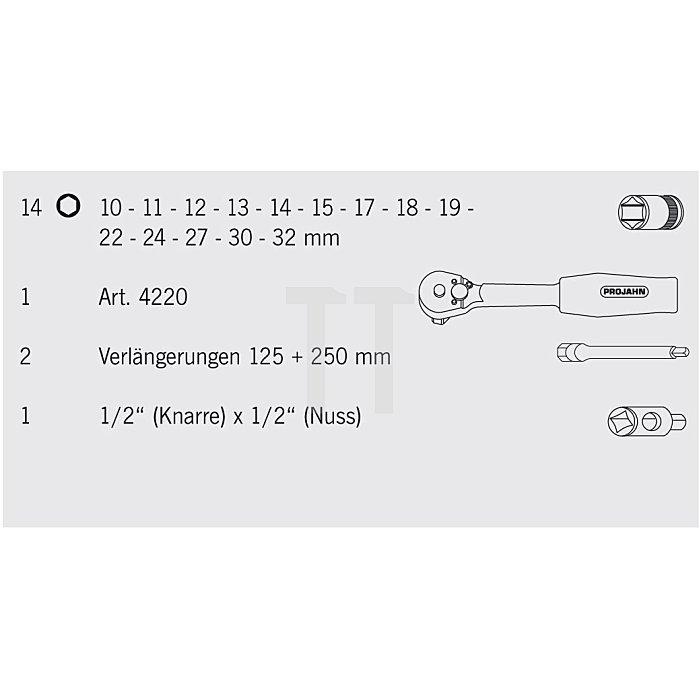 Projahn 1/2 Zoll Steckschlüssel-Satz 18-tlg. 4025