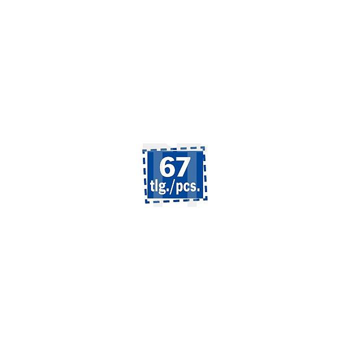 Projahn 1/4 Zoll + 1/2 Zoll TX Steckschlüssel-Satz 67-tlg. 4032