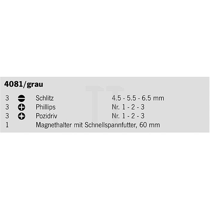 Projahn 1/4 Zoll Bit-Box 10-tlg. 4081