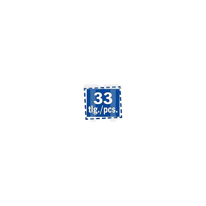 Projahn 1/4 Zoll Bit-Box mit markierten Bits 33-tlg. mit Drehgriffknarre & 6kt-Bit-Stecknüssen 394073