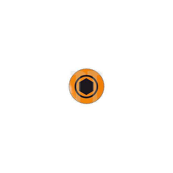 Projahn 1/4 Zoll markierter Bit L25mm Innen-6-kant 4mm 10er Pack 1742-10