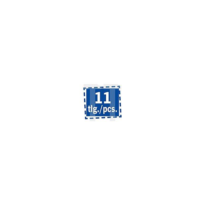 Projahn 1/4 Zoll Ratschenschraubendreher mit Bitfach & 10 markierten Bits 4192