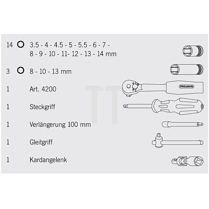 Projahn 1/4 Zoll Steckschlüssel-Satz 22-tlg. 4002