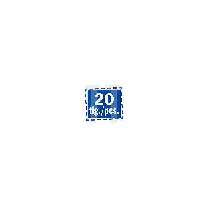 Projahn 1/4 Zoll Stubby Bit-Box 20-tlg. mit Stubby Ratschenschraubendreher 394070