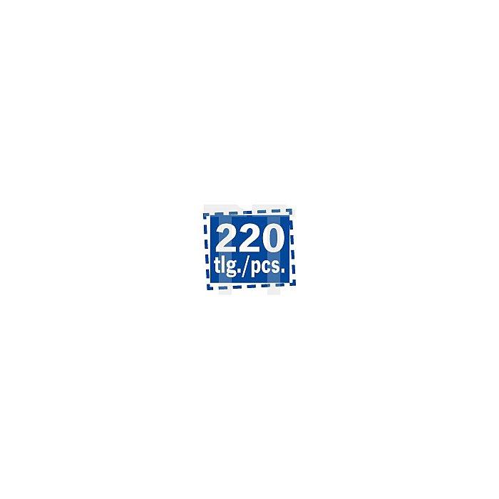 Projahn Bohrer-Magazin HSS-R 220-tlg. 1-13/05+33/42mm ECO 60700