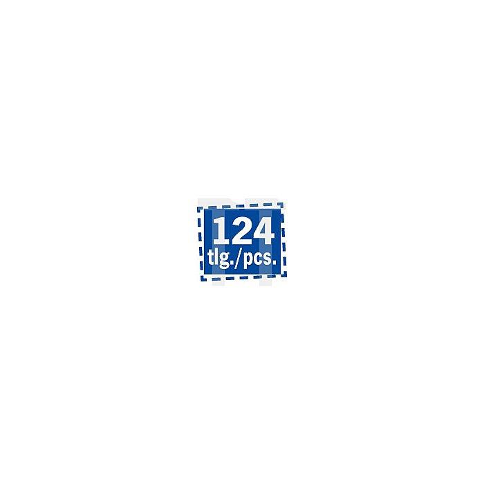Projahn Gabelringschlüssel Rack 125-tlg. 11812-61