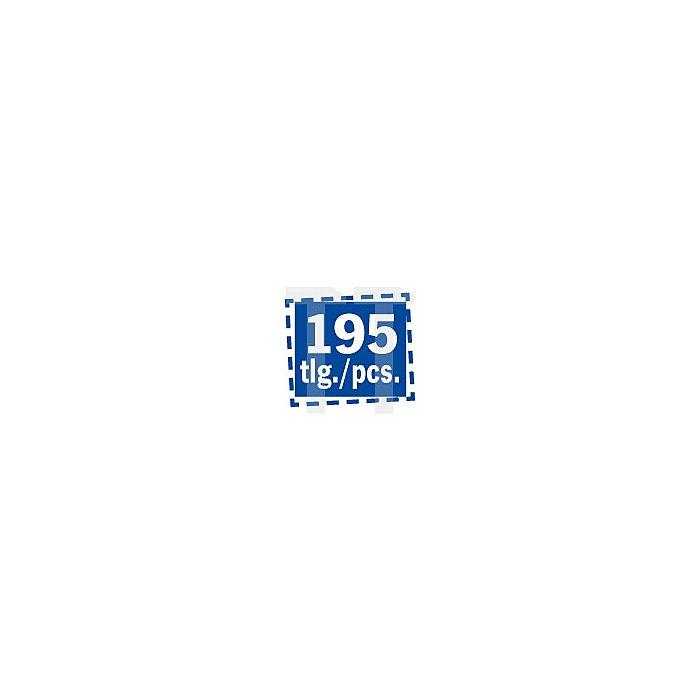 Projahn Industrie Steckschlüssel-Satz 195-tlg. 4045