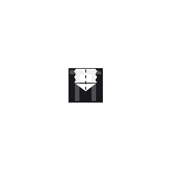 Projahn PROFI MGB-Satz HSS-Co 7-tlg. M3-M12 DIN371/376 35°RSP für Sackloch in ABS Box 91061
