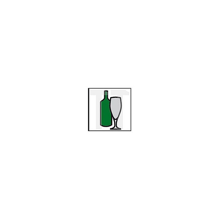 Projahn PROGlas 1/4 Zoll 6-kant Aufnahme 60mm 59206