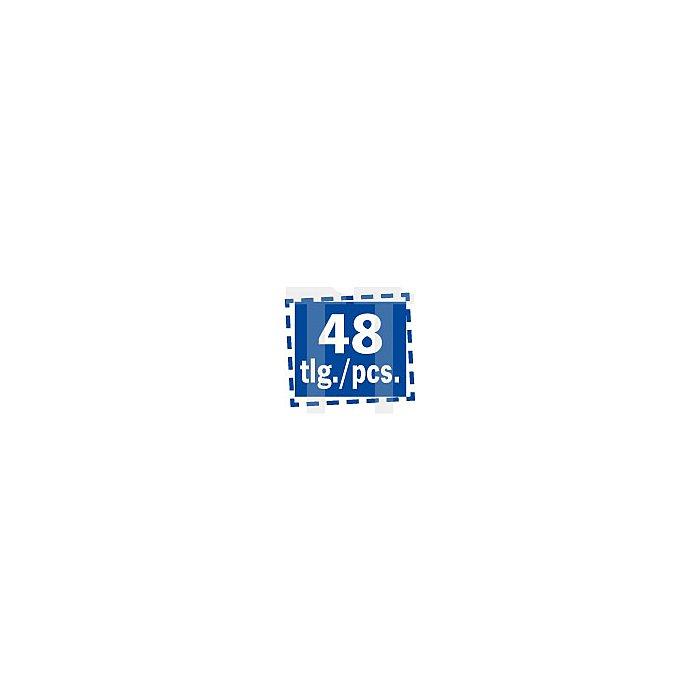 Projahn Rack Bit Schlitz 45-tlg. 11812-23