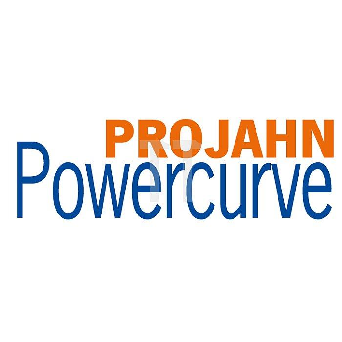 Projahn Säbelsägeblatt PW22540 205x4mm VE5 Powercurve 64403