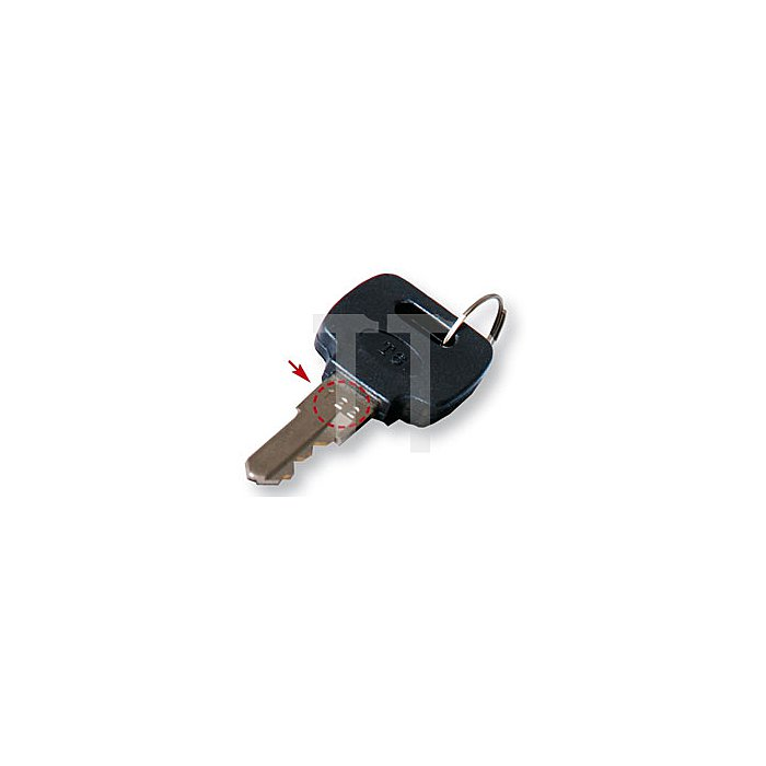 Projahn Schlüssel Nr.048 zu Werkstattwagen 1 Stück 5996-048