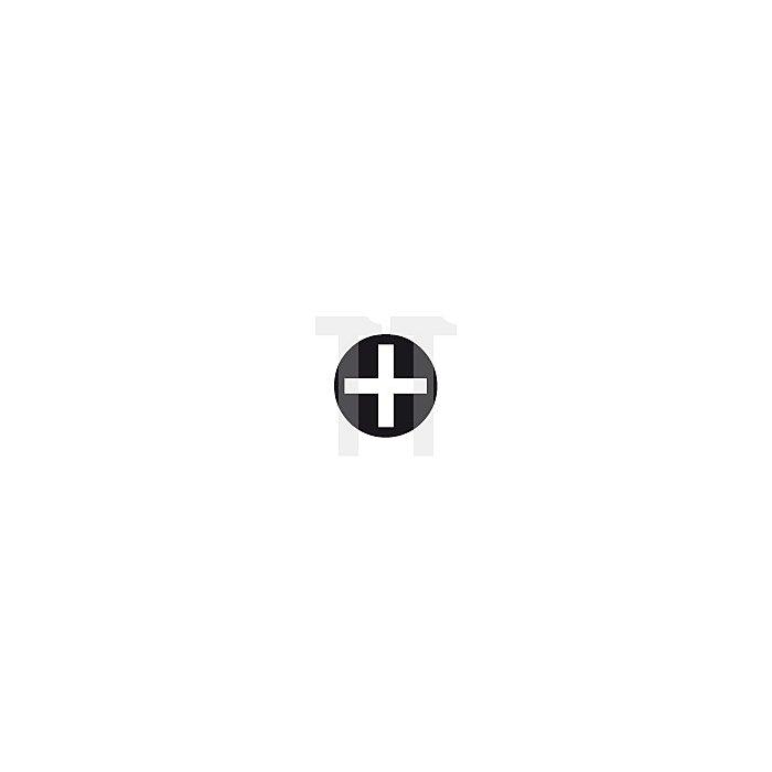 Projahn Schraubendreher-Satz 6-tlg. PH+Schlitz mit durchgehender Klinge, Schlagkappe & Schlüsselhilfe 5199