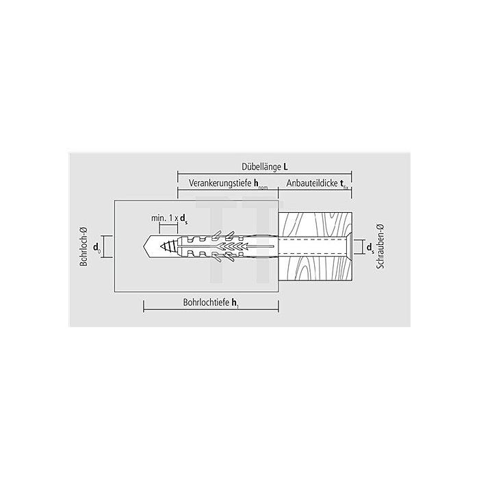 Rahmendübel R 10-100 Toss Senkkopf Torx Schraube gelb verzinkt apolo MEA