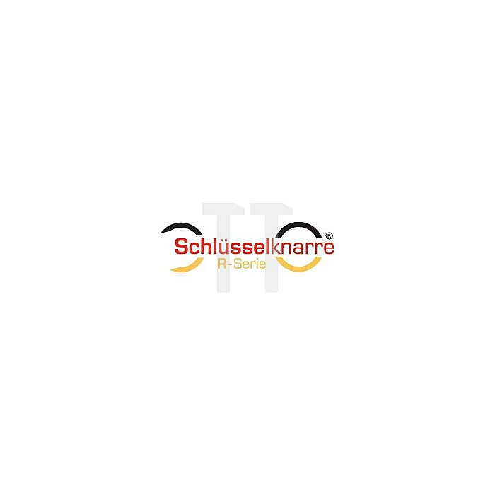 Ring-Ratschenschlüssel-Satz, 5-teilig, in Kunststoff-Kassette, 8 10 13 17 19