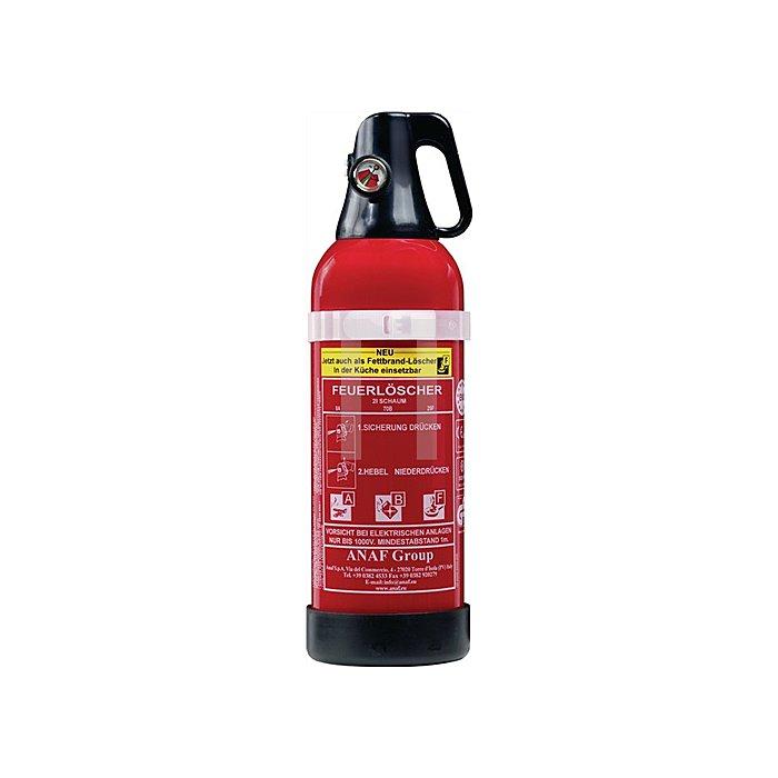 Schaumlöscher FLS 3453 2l für A/B/F rot