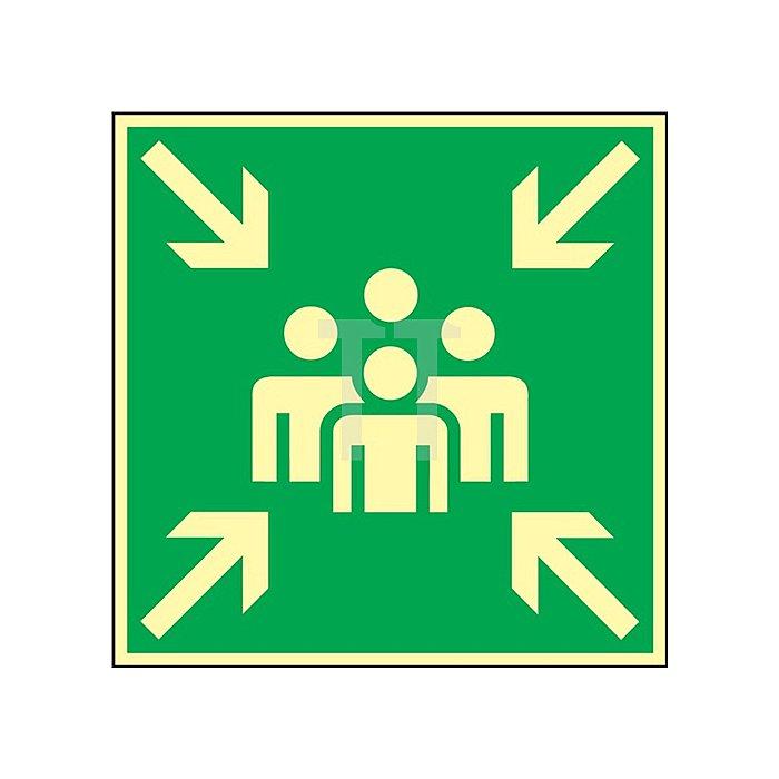 Schild Sammelstelle 148x148mm Kunststoff grün/weiss nachleuchtend