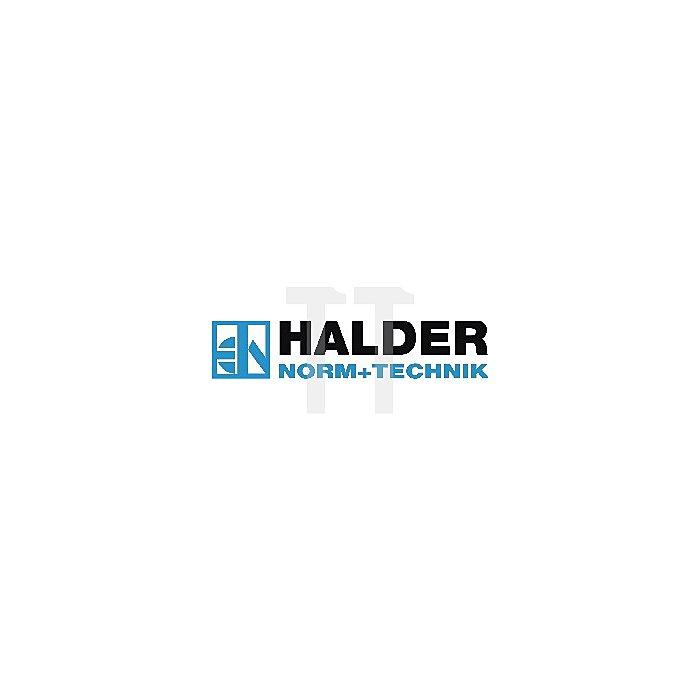Schlosserhammer 500g Maxx-Craft Hickorystiel HALDER rückschlagarm