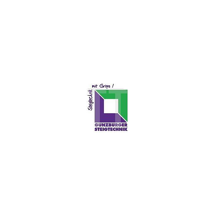 Sprossenstehleiter Alu. 2x8 Sprossen Arbeits-H. bis ca.3500mm