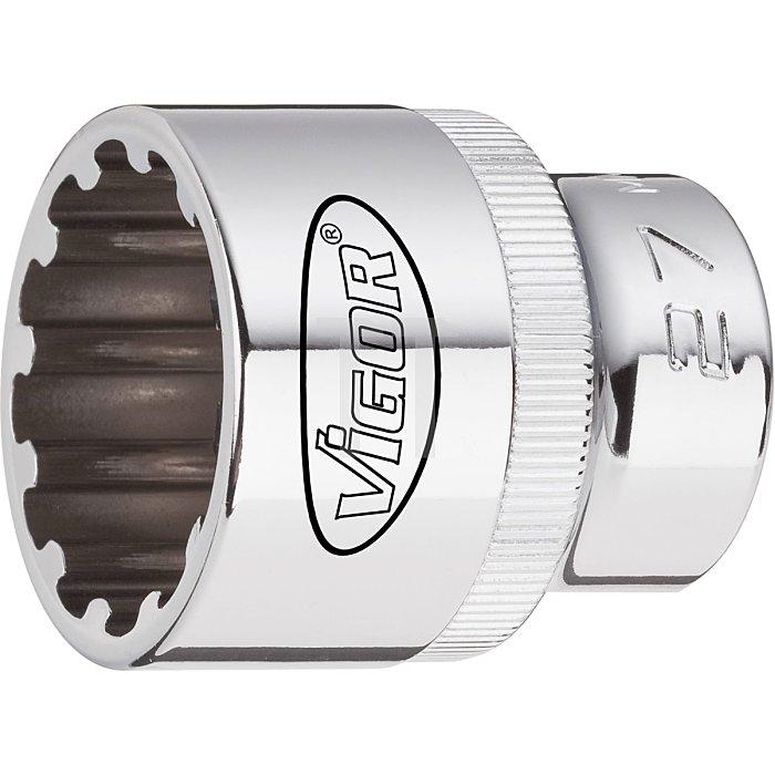 VIGOR Multiprofil-Steckschlüssel Einsatz Multiprofil V1999 - Vierkant hohl 12,5 mm (1/2 Zoll) - 21 - Gesamtlänge: 38.1 mm