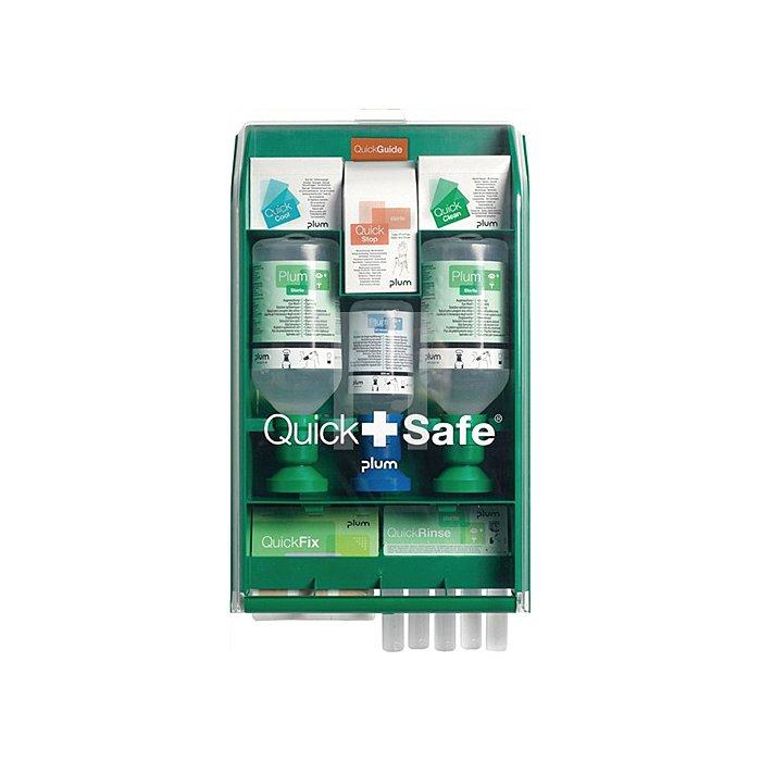 Wandbox QuickSafe Complete gefüllt Lief.m. Befestigungsmaterial PLUM