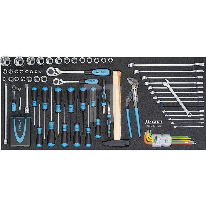 Hazet Werkzeug-Satz-Grundsortiment, groß 163-387/125